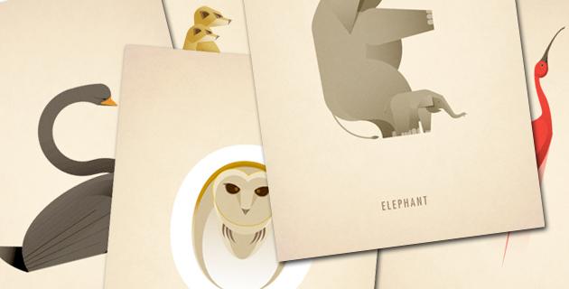 Animal Alphabet | Marcus Reed