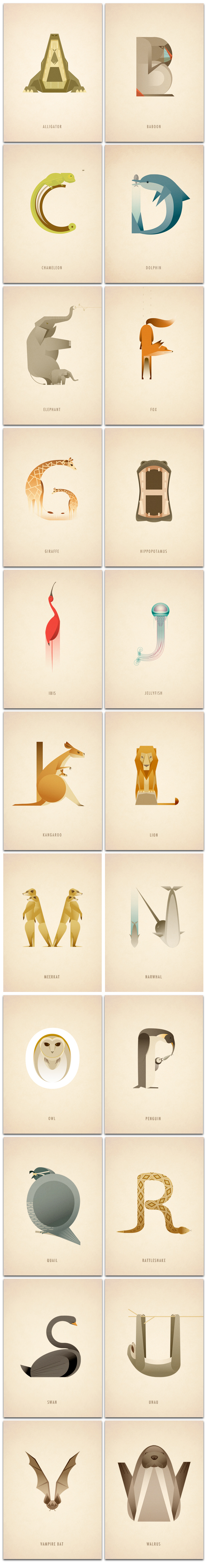 Animal Alphabet | Marcus Reed